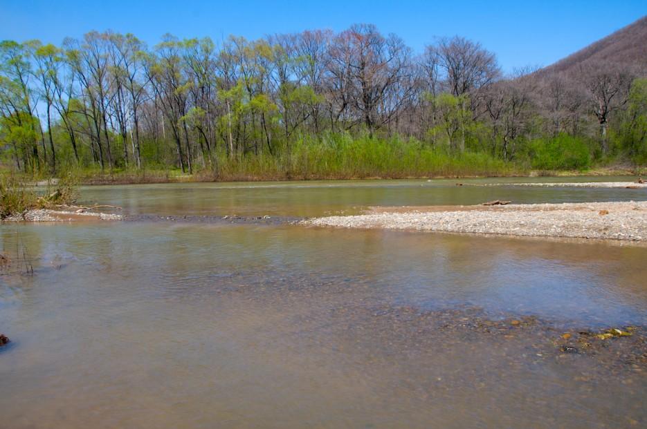 Весенне половодье на реке Тигровая | Ущелье Щеки.
