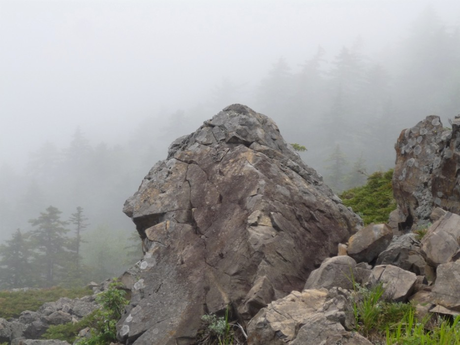 на второй вершине  г.Фалаза | гора Фалаза (Литовка). Шкотовский р-он.