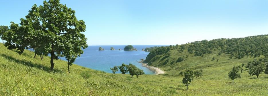 Кекуры Бакланьи | Панорамы полуострова Гамов