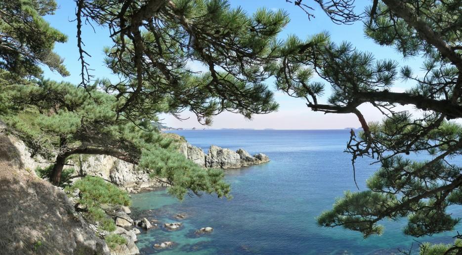 Возле м.Азарьева | Панорамы полуострова Гамов