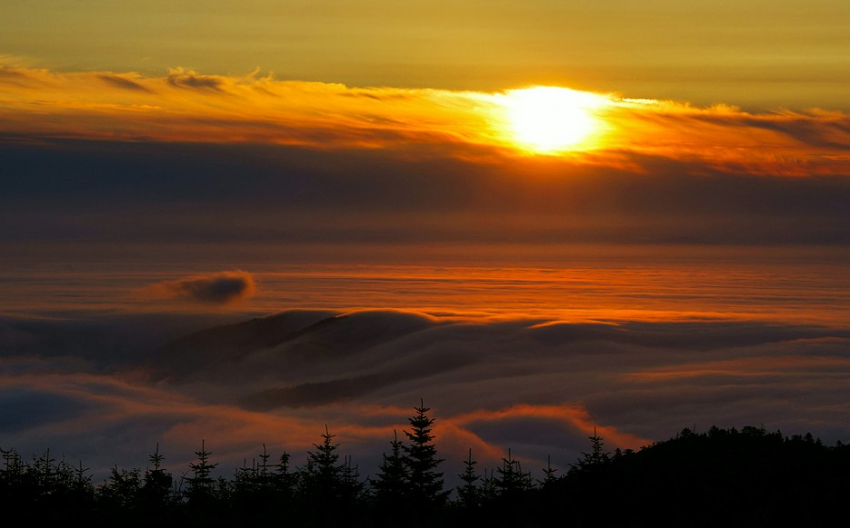 Над облаками. Вершина сопки Туманная.   Хребет Большой Воробей, г.Туманная