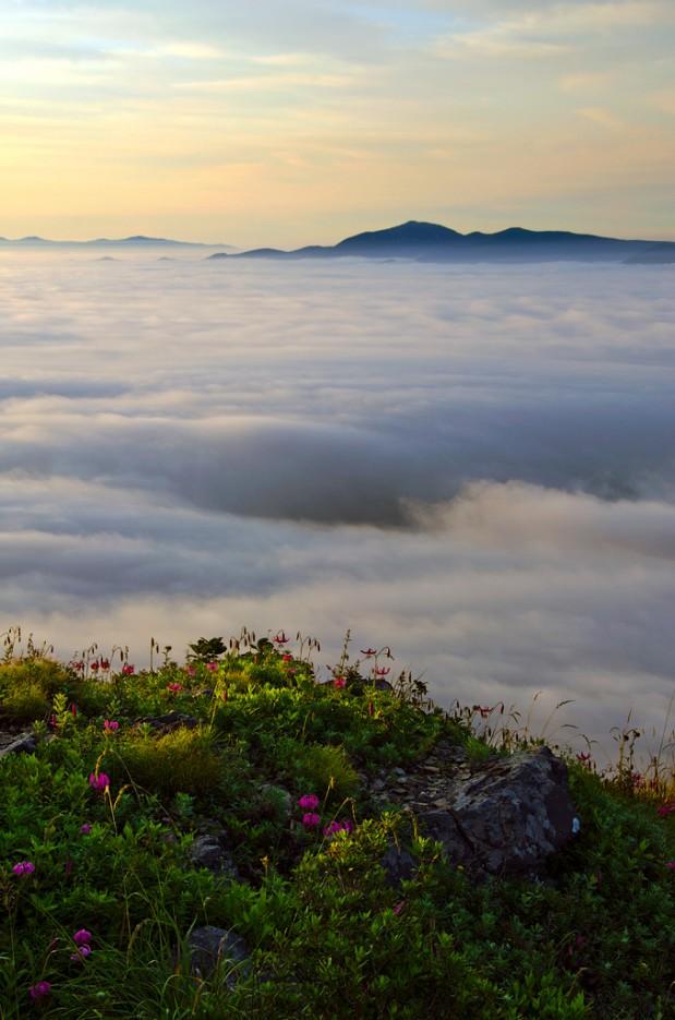 На краю облаков. Вершина сопки Туманная. | Хребет Большой Воробей, г.Туманная