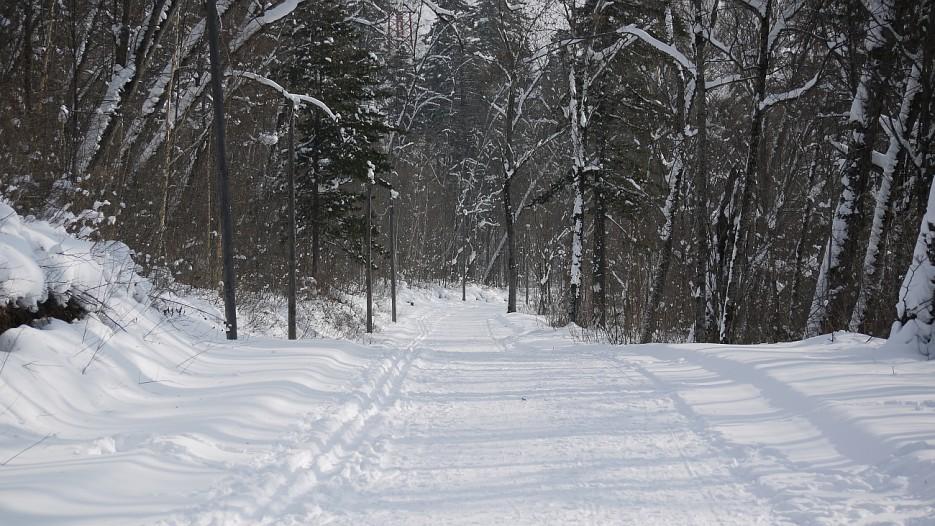 По лыжнеее :)  кстати вечером вся лыжня освещена. | По дороге на Восток