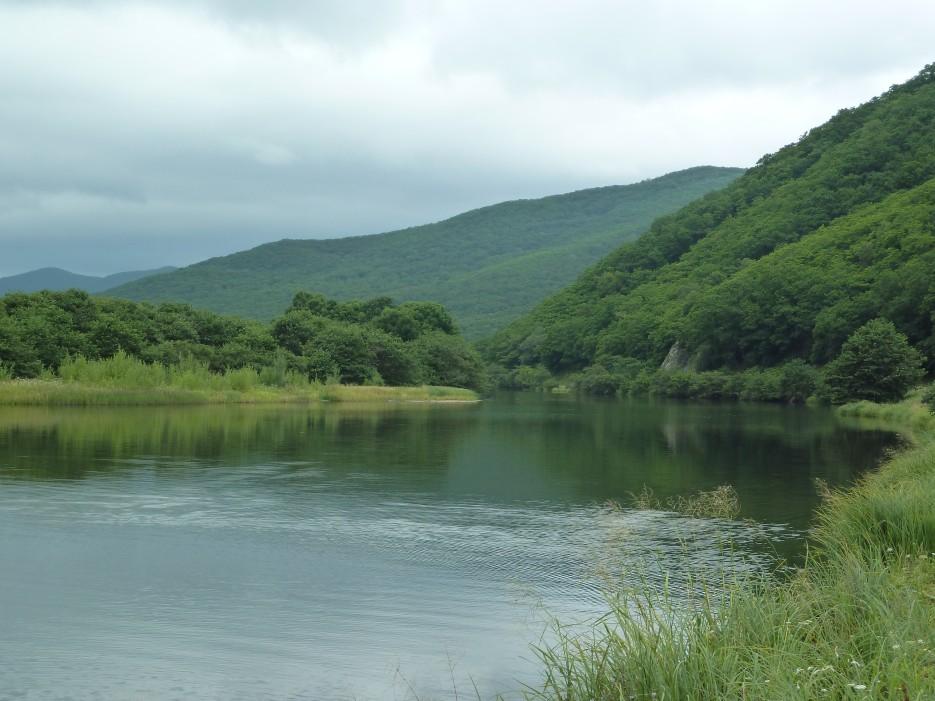 Осока, небо, гладь реки и много много тишины! Необычайной красоты места! До моря меньше чем полкилометра.   Ольгинский район