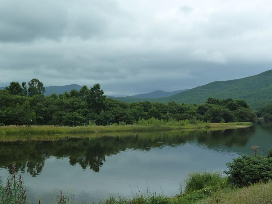 Деревья, небо, гладь реки и не понять где верх где низ. Все перепуталось слегка. Тумановка - красивая река! | Ольгинский район