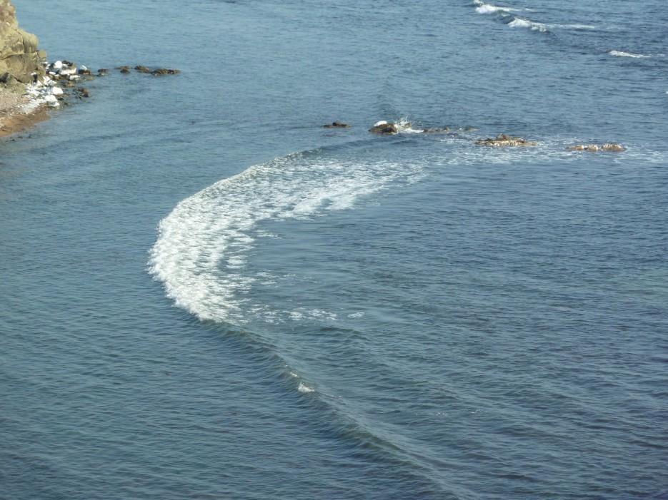 Бухточки правее Шаморы | Океанский военный санаторий