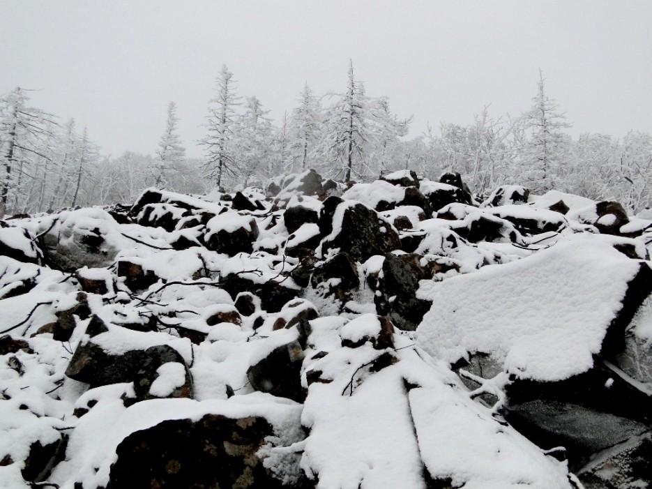 Ноябрь на Фалазе.   гора Фалаза (Литовка). Шкотовский р-он.