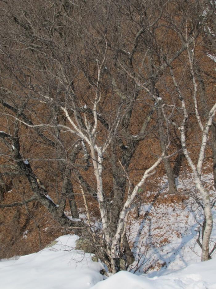 никакой нетерпимости между белыми и черными | хребет Центральный и Седанкинское водохранилище