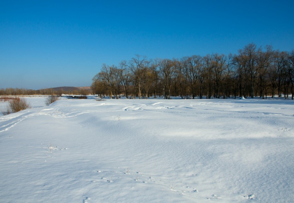 Берег река   Зимняя Арсеньевка