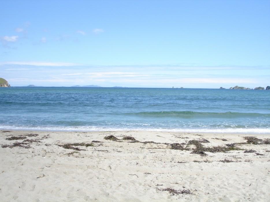 запасаются база приморья белые пески это белье