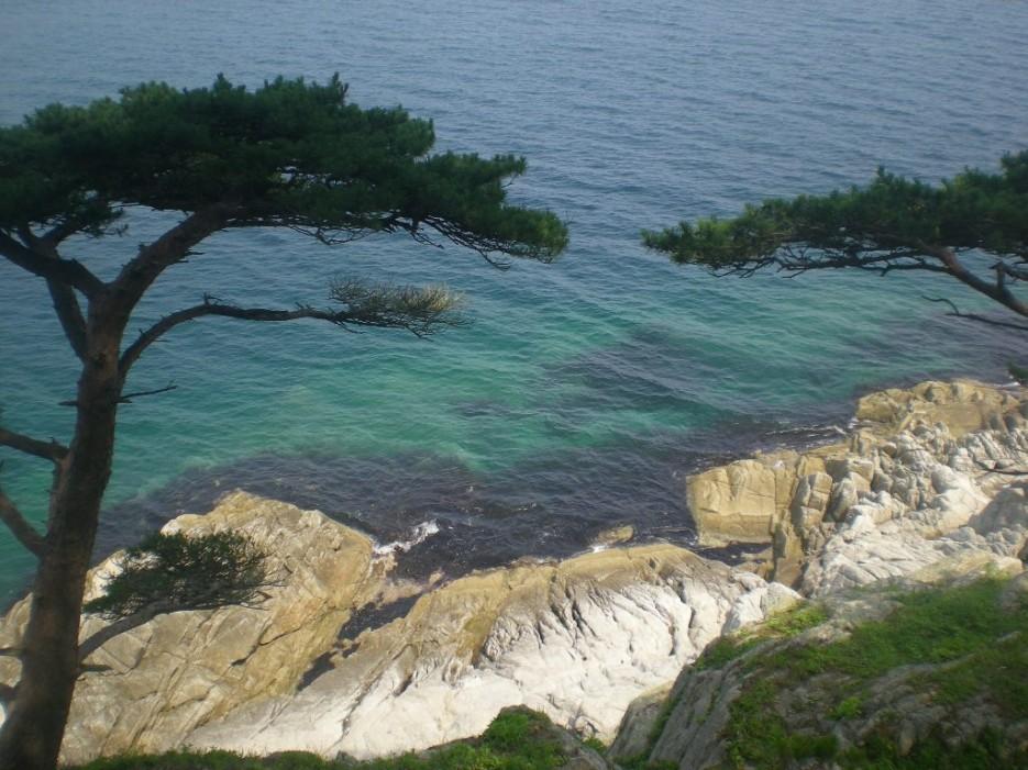 2 опахала | остров Томящегося сердца бухта Теляковского