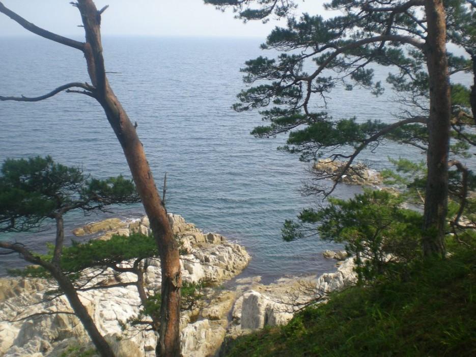скалы | остров Томящегося сердца бухта Теляковского