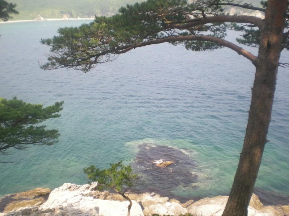 островок самоопределился | остров Томящегося сердца бухта Теляковского