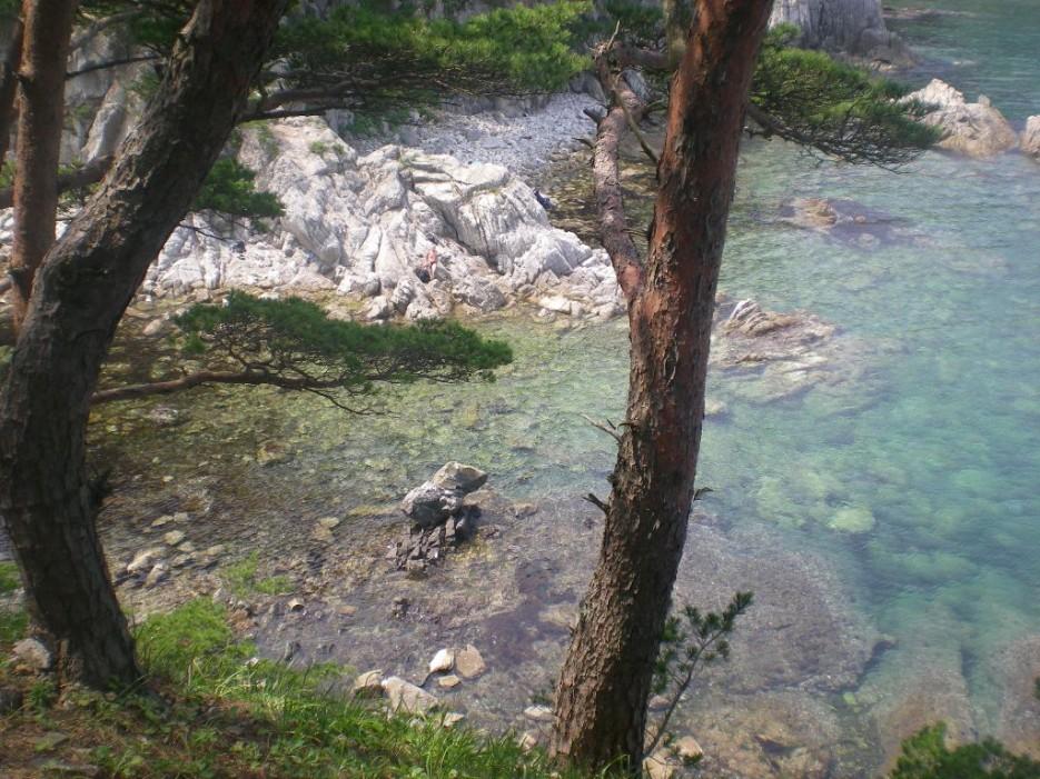 каменный воробей | остров Томящегося сердца бухта Теляковского