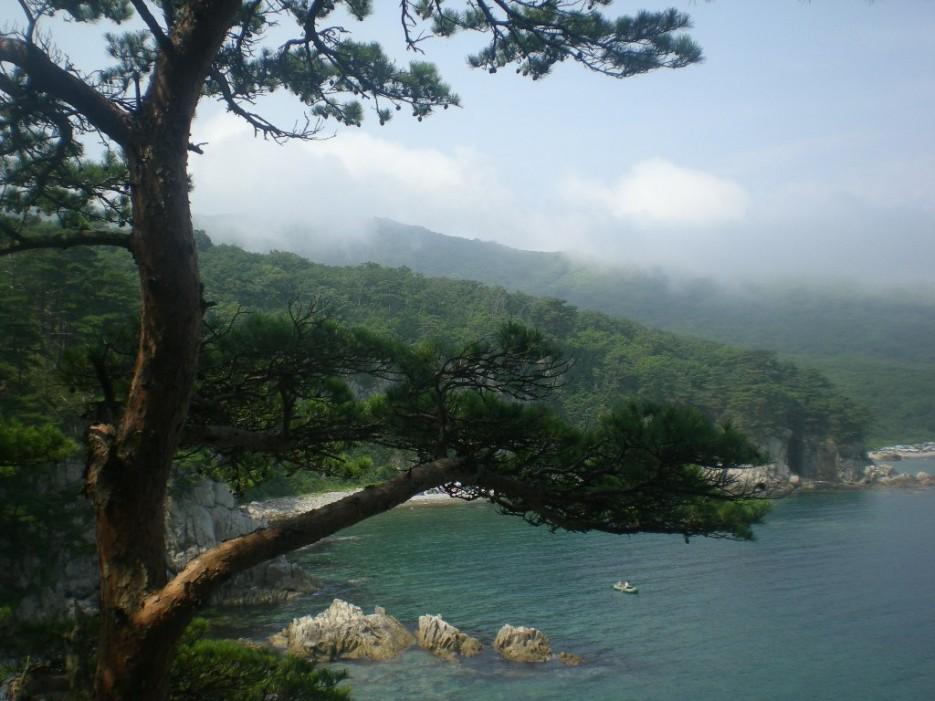 чудо | остров Томящегося сердца бухта Теляковского