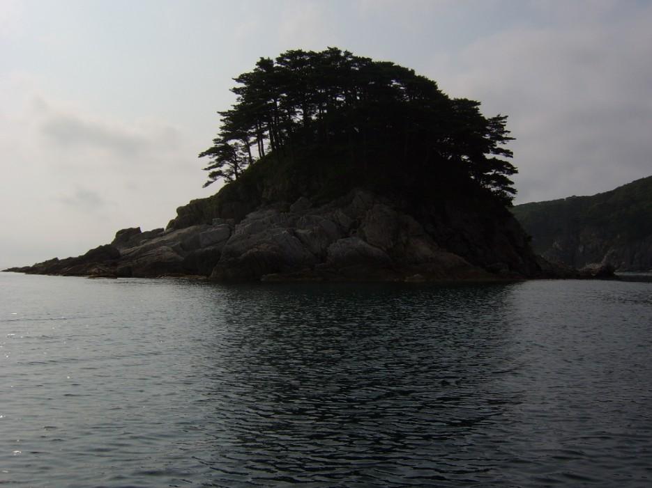 силуэт | остров Томящегося сердца бухта Теляковского