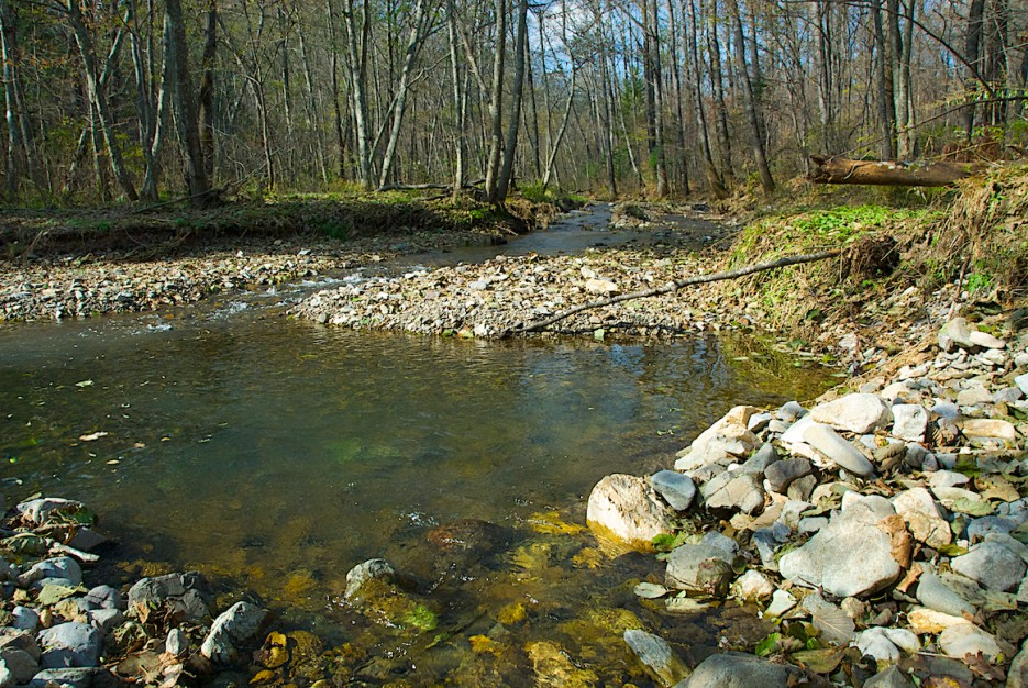 Небольшая заводь   Весна на притоке реки Тигровой