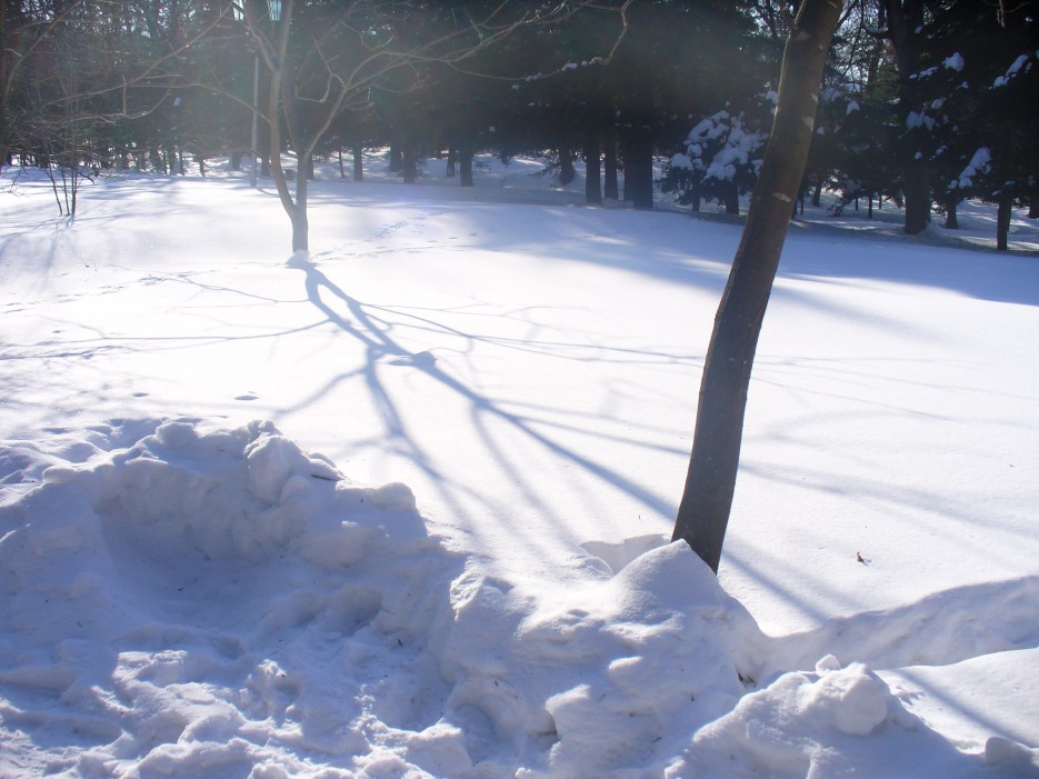 Тени на снегу | Океанский военный санаторий