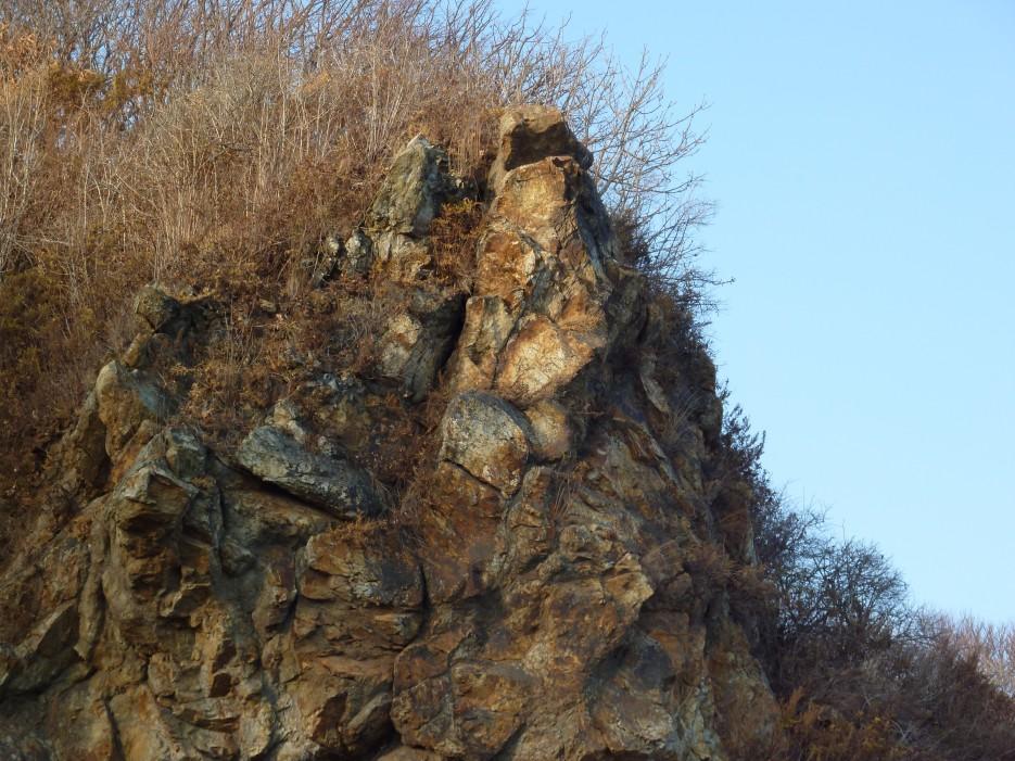 Скала покрытая кустами | Шамора