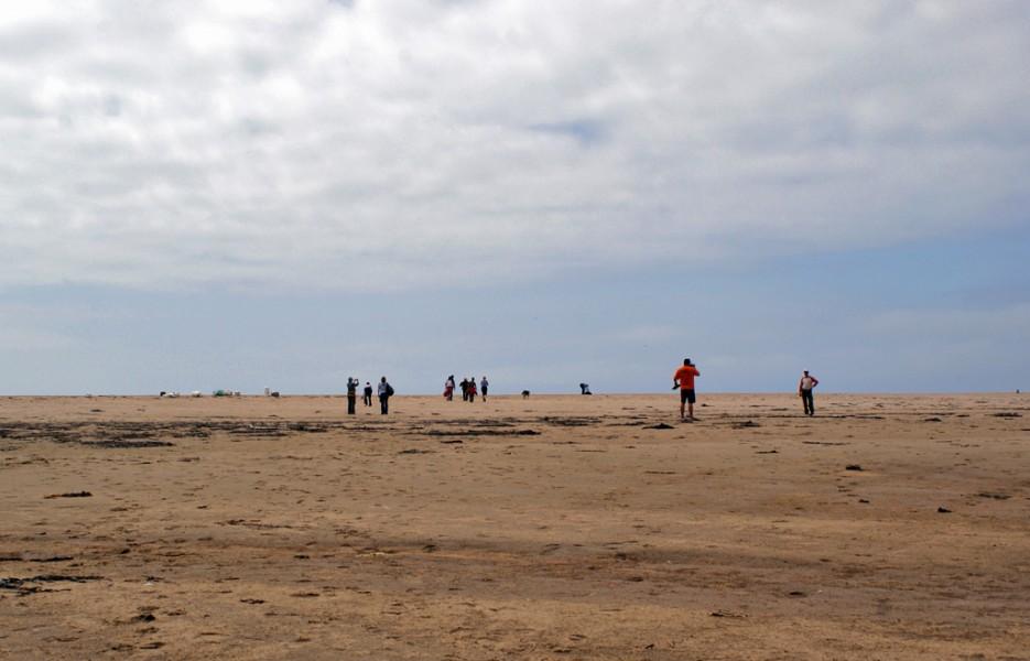 Где-то в пустыне... | Мыс Островок Фальшивый и остров Фуругельма