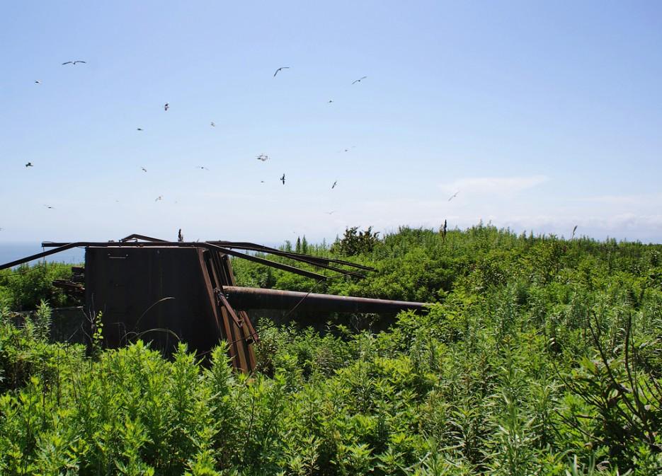 Батарея № 250. | Мыс Островок Фальшивый и остров Фуругельма