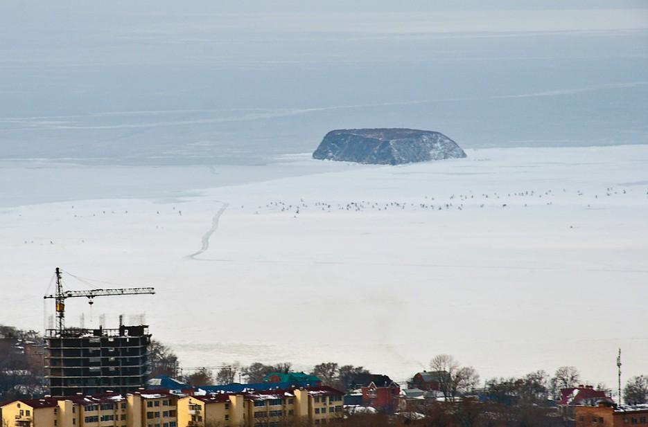 Вид на остров Скребцова (Коврижка) | Ботанический сад и Седанкинское водохранилище. Зима-Весна.