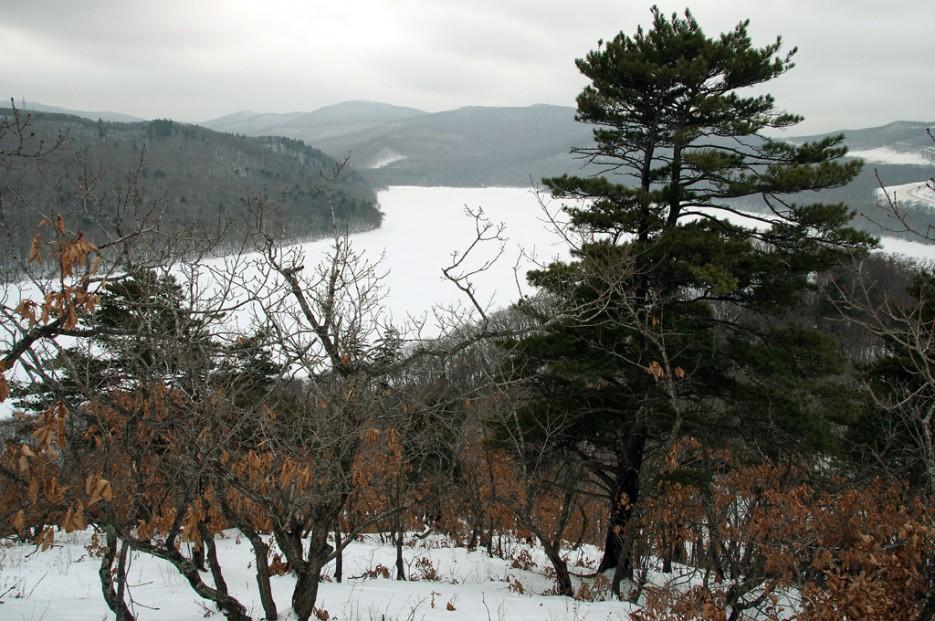 Вид на водохранилище. | Ботанический сад и Седанкинское водохранилище. Зима-Весна.