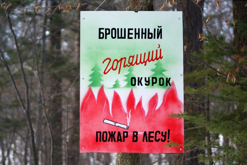 Берегите лес от пожаров. | Ботанический сад и Седанкинское водохранилище. Зима-Весна.