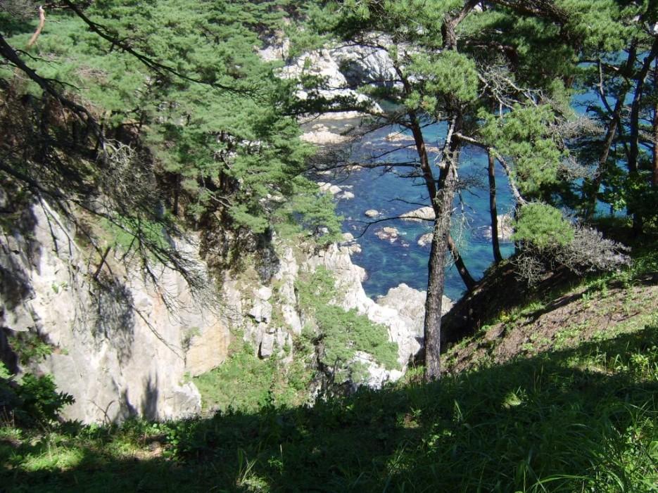 море везде... | Морской заповедник (Хасанский район)