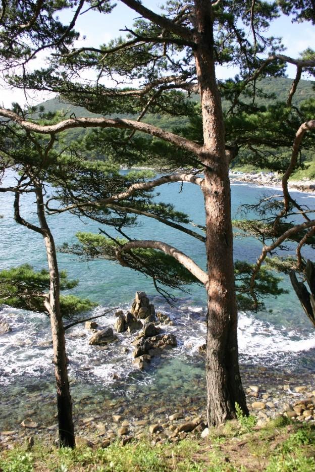искрящийся прибой | Морской заповедник (Хасанский район)