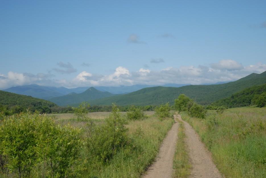 По дороге к подножью горы Сестра. Лазовский район.   Гора Сестра и хребет Зубы Дракона