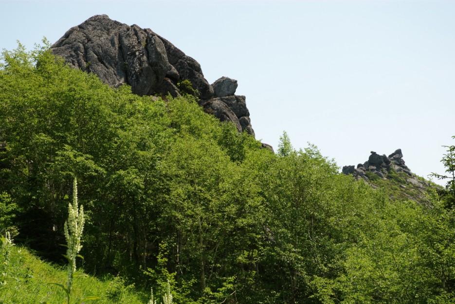 Хребет зубы Дракона. По дороге к горе Сестра. Лазовский район. | Гора Сестра и хребет Зубы Дракона