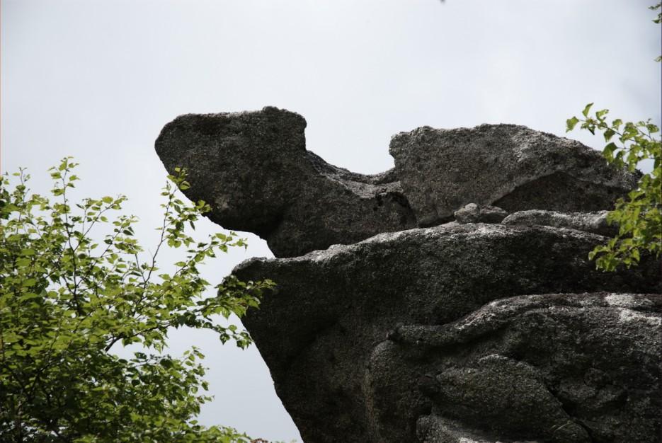 Хребет Зубы Дракона. На пути к горе Сестра. Лазовский район.   Гора Сестра и хребет Зубы Дракона