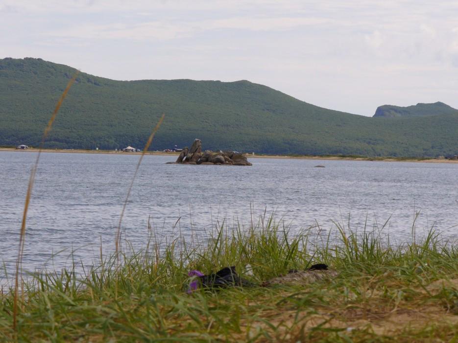 Островок | Ольгинский район