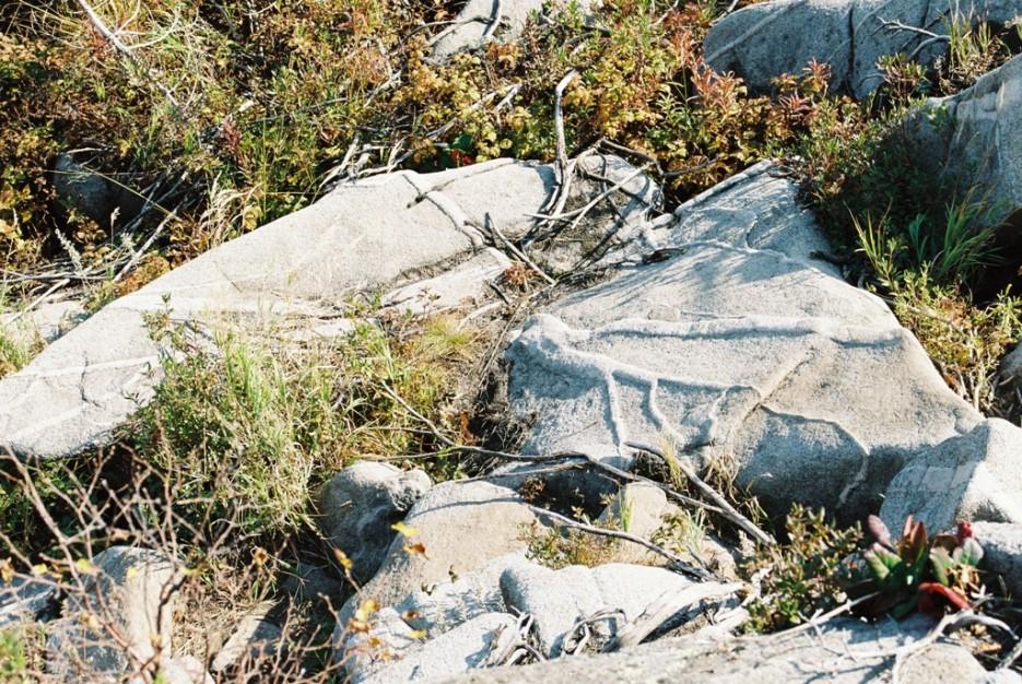 жилы камней   поход от Фалазы через Ливадийский хребет на Пидан