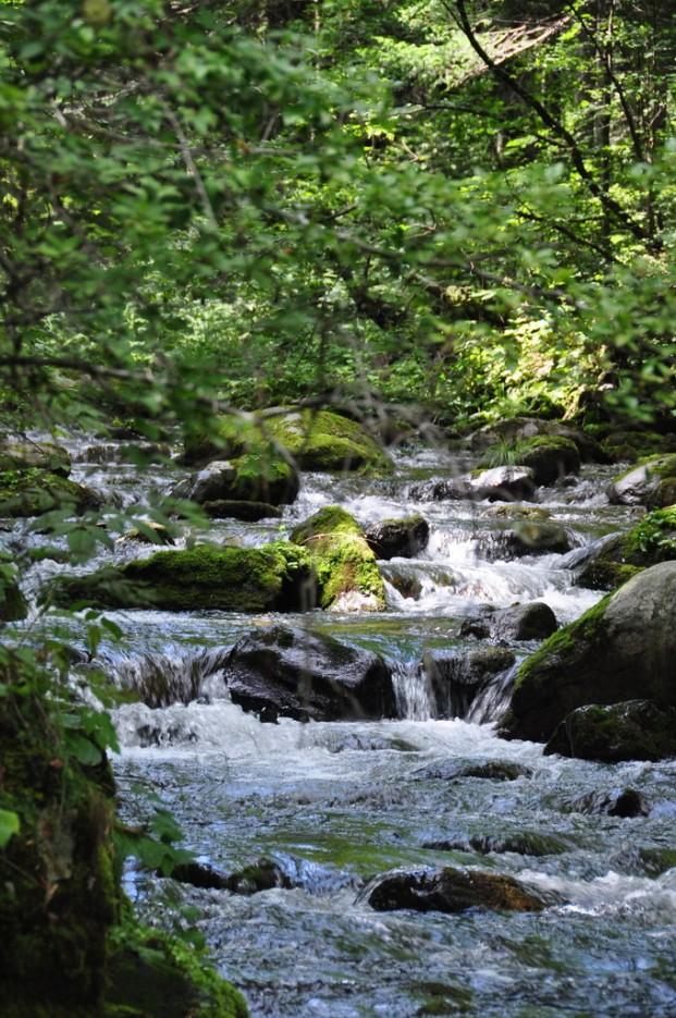 Фото 27333 | Еломовские (Беневские) водопады.