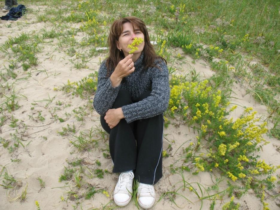 аромат | бухта Шепалова, Находка
