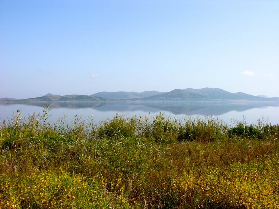 Камыш и озеро | Озеро Птичье (Тальми).