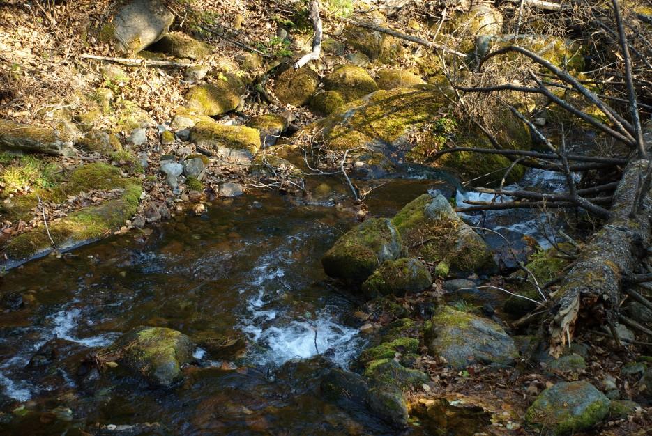 Река   Беневские (Еломовские) водопады