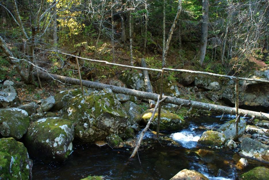 Мост бревно   Ключ Смольный, гора Фалаза.