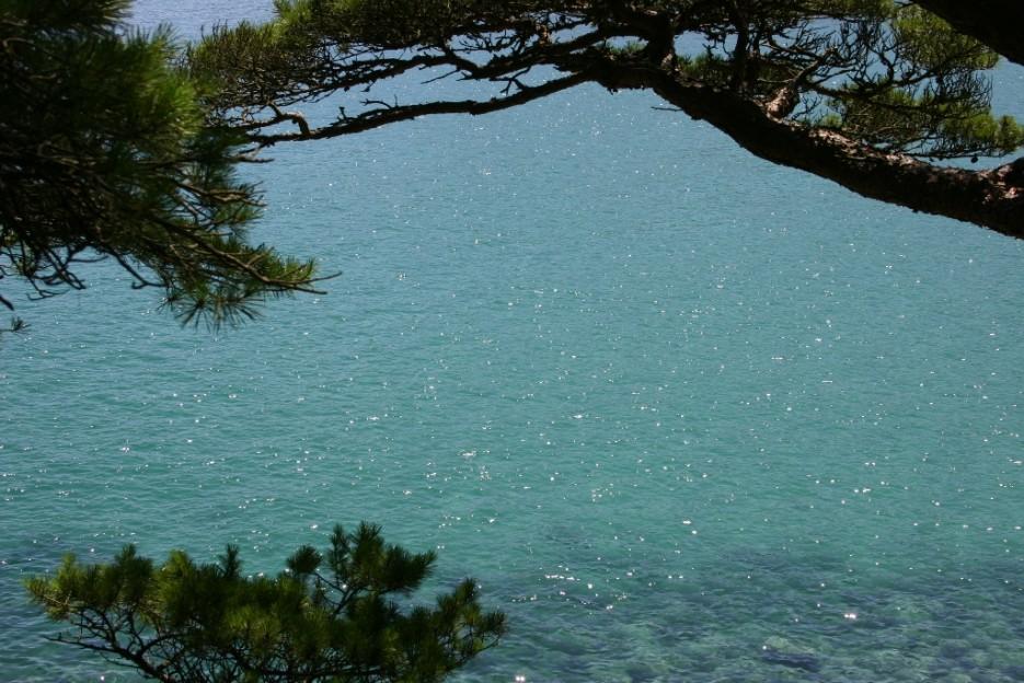 сверкающее море | бухта Теляковского, Хасанский район