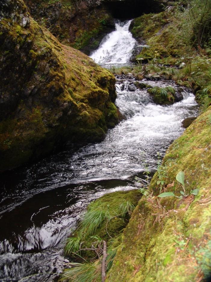 Водопады и пороги реки Милоградовка. Лазовский район.   Река Милоградовка. Ольгинский район.