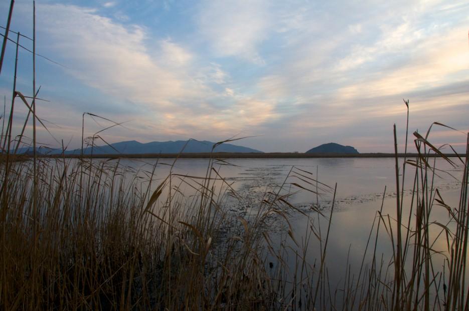 Ранное утро | Хасанские болота осенью. Часть 2.