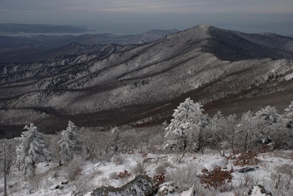 Вид сверху   Партизанский район, выс. 1010 гора Чёрный куст