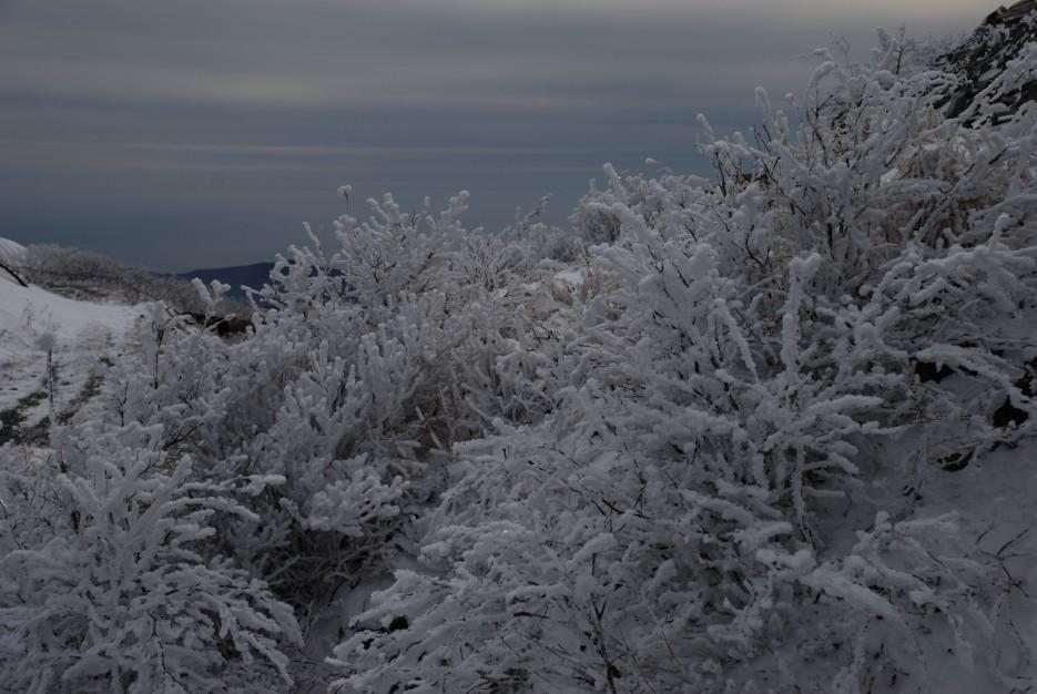 Море | Партизанский район, выс. 1010 гора Чёрный куст
