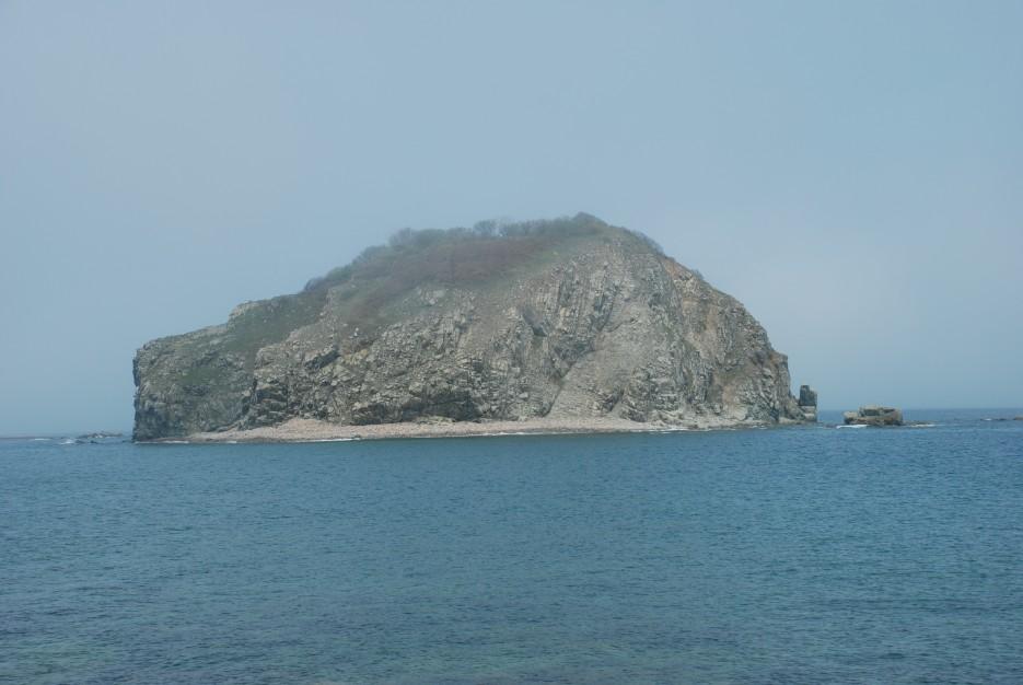 Остров   Остров Наумова бакланьи гнезда