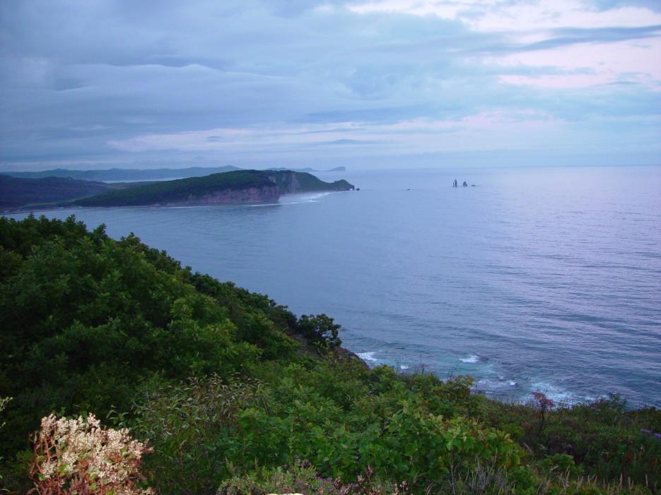 Бухта Южная | Залив Владимира
