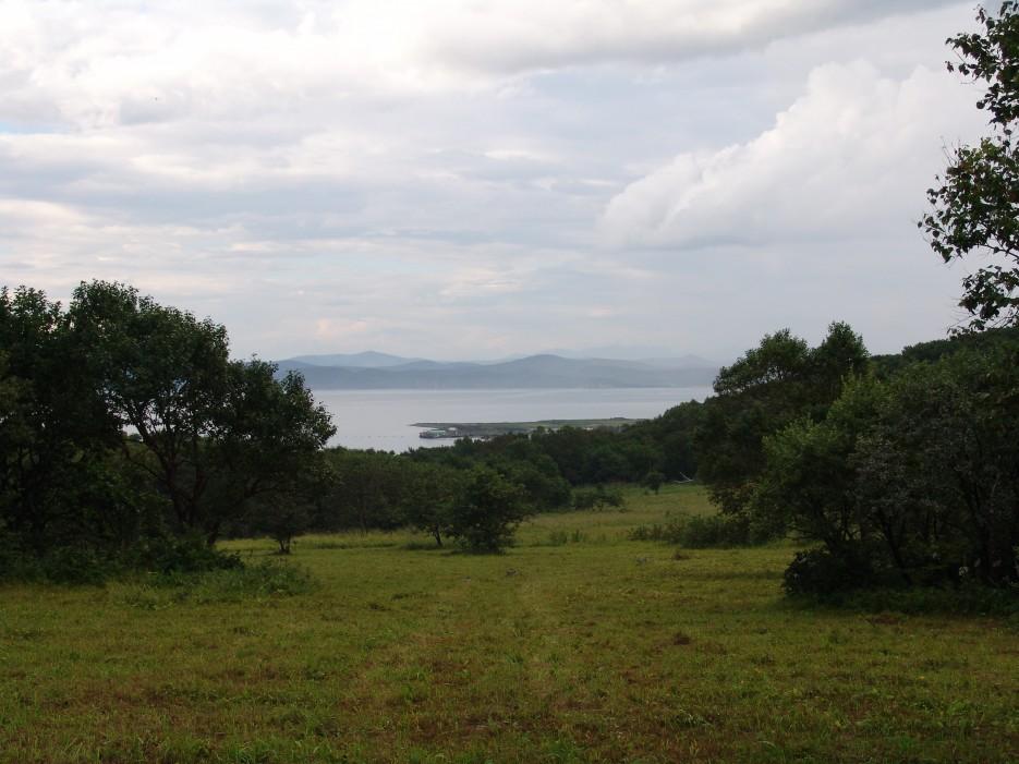 Сенокос   Залив Владимира