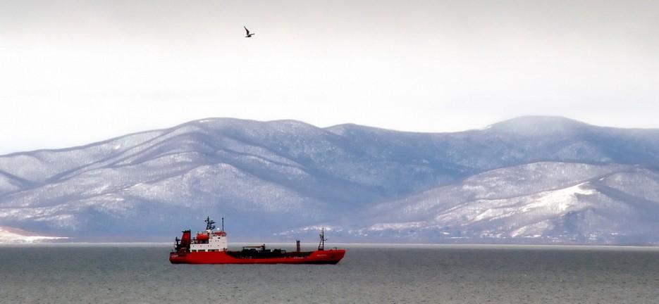 Вид на западное побережье Амурского залива. | Природа Приморского края. Разное.