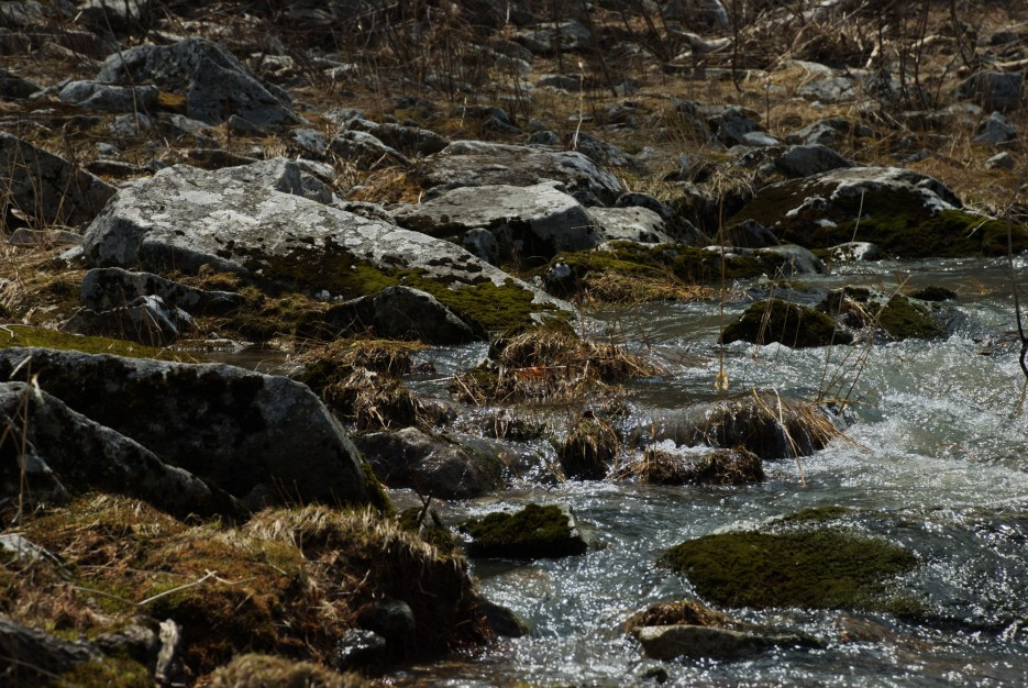 Побережье   Ущелье Дарданеллы, река Тигровая